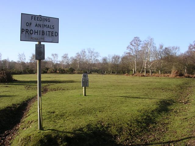 Feeding_Of_Animals_Prohibited_on_Cadnam_Common_-_geograph.org.uk_-_92929